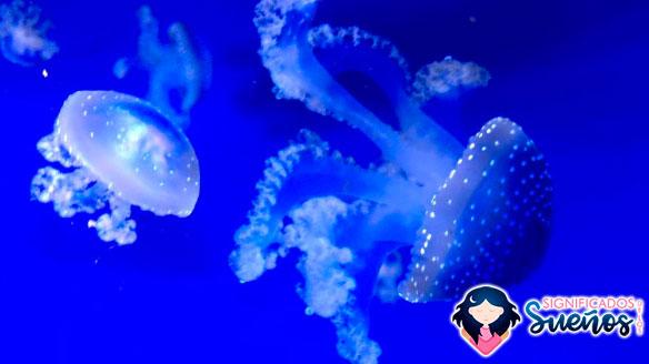 soñar animales marinos