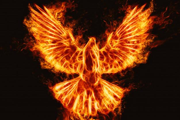 soñar con ave en llamas