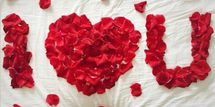 cama de rosas imagen 4