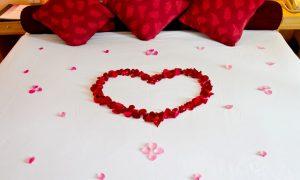 Soñar con Cama de Rosas Rojas