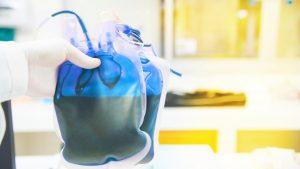 sangre azul imagen 1