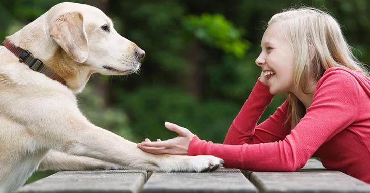 soñar con perro que habla