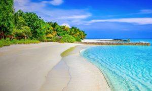 Soñar con el Paraíso
