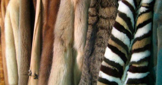 abrigo de piel imagen 1