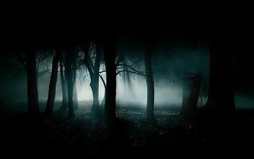 bosque aterrador imagen