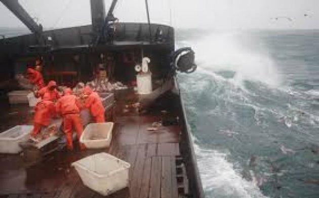 pesca pesada imagen
