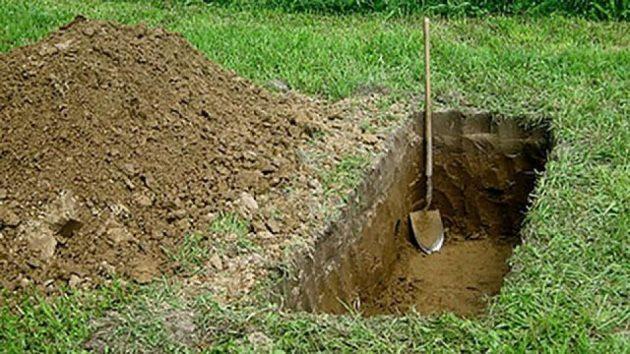 cavar tumba imagen