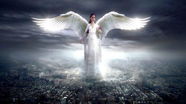 ángeles blancos imagen