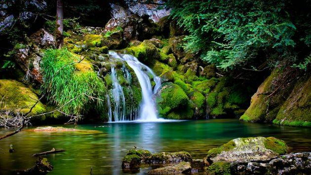 soñar con la naturaleza imagen